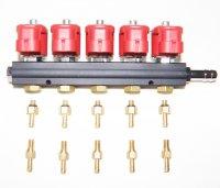 Газовые форсунки Palacar WPC1, 5 цил, 3Ом, с жиклёрами и штуцерами в коллектор (
